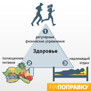 Пирамида здорового образа жизни